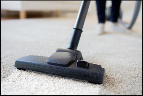 ACS Carpet U0026 Upholstery Cleaning   Rochester, NY   Carpet Cleaning   Since  1990